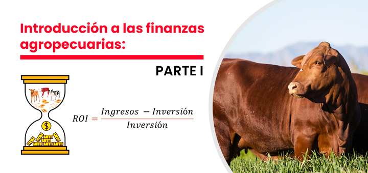 Introducción a las finanzas agropecuarias (Parte 1):