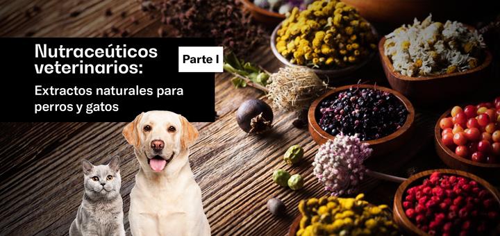 Nutraceuticos-veterinarios-extractos-naturales-para-perros-y-gatos