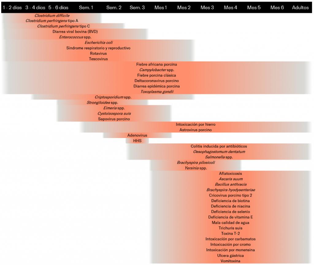 Tabla 1. Causas de diarrea en los cerdos en función del momento de aparición más frecuente. Adaptado desde: Ramirez A. en Diseases of Swine 11th edition (2019). HHS: Hipersensibilidad a la harina de soya.